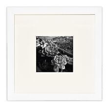 Wall Photo Frame Collection, 8x8 White Photo Frame with Ivory Color Mat for 4x4