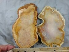 2 indonesian coral agate slabs
