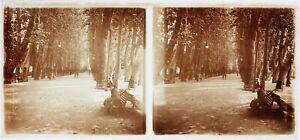 FRANCE Une femme dans un parc Photo Plaque de verre Stereo Vintage c1920