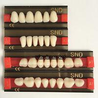 New Three-Layer A1 Shade Full Mouth Set S1 L25 S30 Dental Acrylic Resin Teeth