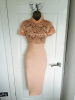 Orange Abend Midi Bleistift Bodycon Blumen Party Wiggle-dress 8 10 12 14