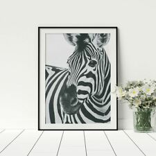 Zebra Poster Black And White Artwork Photography High-quality Paper Prints