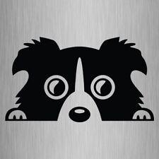 Border Collie Peeking Dog Sticker Vinyl Car Decal 175mm x 100mm