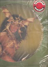 "CHER ""Take Me Home"" 1979 Casablanca Picture Vinyl LP"