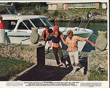 The Happening 1967 8x10 movie photo (mini lobby card) #nn
