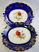 """Antique cobalt & gilt porcelain dish pair Coalport ?   11.5"""" long hand painted"""