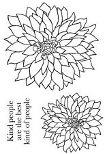 Woodware Clear Magic Bold Blooms- Delilah stamp JGS513
