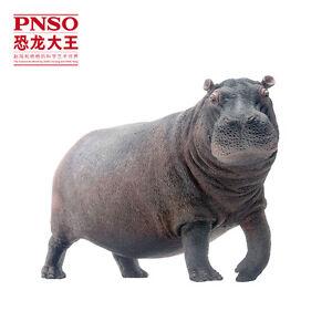 New PNSO Hippo Hippopotamus Wildlife Scientific Realistic Large Model Art Figure