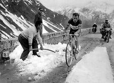 CHARLY GAUL TEAM FAEMA GIRO D'ITALIA 1957 BREAKAWAY POSTER