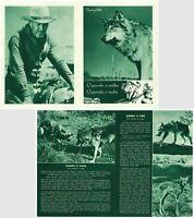 THE LEGEND OF LOBO Original MINT RARE EXYU Movie Program 1962 WALT DISNEY PIC.