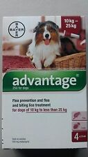 Advantage Red For Dogs 21 - 55 lb 4 pack 10-25KG