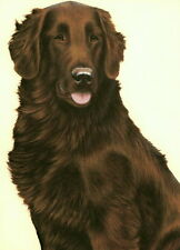 More details for nigel hemming just dogs - liver flat coated retriever brown gun dog flatcoat art