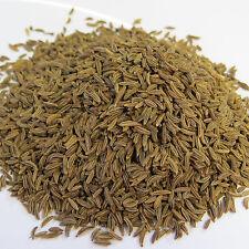 (100g=7,00€)  50g Bio Kümmel ganz - DE-ÖKO-005