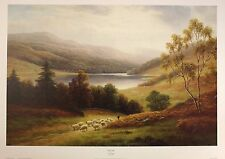 "WILLIAM MELLOR ""Rydal Lake"" district sheep NEW art SIZE:51cm x 76cm  RARE"