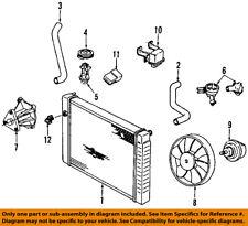 Pontiac GM OEM 89-91 Sunbird Radiator Coolant-Lower Hose 10101204