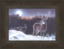 MOONLIGHT ENCOUNTER by Mark Bordignon 10x13 FRAMED PRINT PICTURE Deer Buck Does