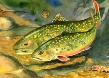 Brook Trout in Love Painting 8X10 Watercolor Cottage Art Print by Barry Singer