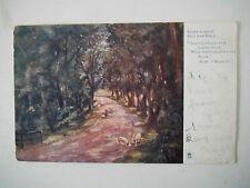 Allt Nam Breac Alder Avenue Very Early 1900s Old Postcard Tuck Strathpeffer 1904