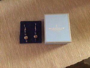 Beautiful Blue Hematite, Silver Colour Earrings