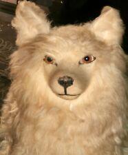 ❤️ Ancien chien Loulou poméranie,range pyjama ,spitz hund ,dog box ,poupée❤️