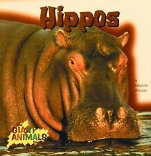 Hippos (Giant Animals)