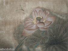 "Original Gongbi Style Chinese Painting on Paper: Lotus Flower 13.78""x17.72"""
