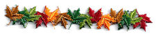 Leaf - Fall Leaves - Autumn Strip - Embroidered Iron On Applique Patch