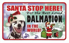 Santa Stop Here Sign Best Loved Dalmation in the World