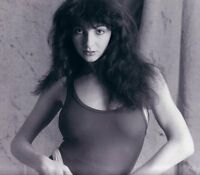 Kate Bush Guitar Tabs Tablature Lesson Software CD 81 Songs Song Book Tuition