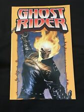 Marvel Ghost Rider Spirit of Vengence Poster Comic Book