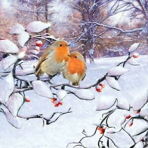 20 Paper Party Napkins Robins on Branch Pack of 20 3 Ply Tissue Serviettes