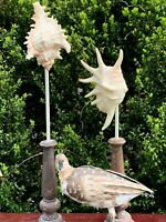 UNIQUE Set of 3 Nautical Decor Seagull Metal & Conch Shell Pedestal Stand ❤️sj8j