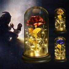 Eternelle sous Cloche Rose Enchantée Soie Rose en dôme Bois LED Anniversaire