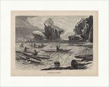 Seehundjagd auf Grönland Harpune Kajak Inuit Arktis Holzstich Jagdzeitung 0103