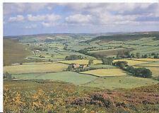 Yorkshire Postcard - Little Fryup Dale     LE94