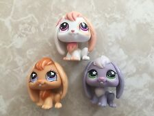 Littlest Pet Shop RARE Floppy Lop Ear Baby Easter Bunny Bunnies 648 480 1304 LOT