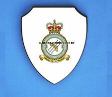 ROYAL AIR FORCE 3 FORCE PROTECTION WING WALL SHIELD (FULL COLOUR)