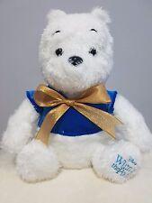 Disney Winnie The Pooh Plush Bear Stuffed Animal Special Edition - Brand New