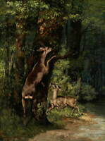 Gustave Courbet Deer Giclee Art Paper Print Paintings Poster Reproduction