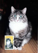 Kitten Home Pet Norway Cat Aland  Finland FDC Maxi 2003