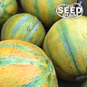 Israel Ogen Melon Seeds 25 SEEDS NON-GMO