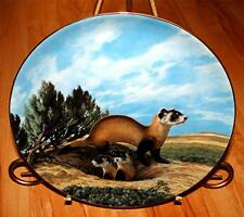 LAST OF THEIR KIND The Black Footed Ferret PLATE