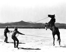 The Misfits Clark Gable Montgomery Clift rope horses in desert 12x18  Poster