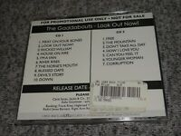 THE GADDABOUTS Look Out Now RARE Advance PROMO 2 CD 2012 Edie Brickell U.S. Folk