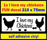 Fun i love chickens bumper kitchen wall fridge sticker car sign decal hen n1