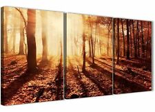 3 Panel Trees Canvas Autumn Leaves Forest Scenic Landscapes - 3386 Orange 126cm