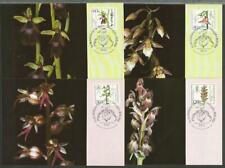 Germany Berlin Maximum Card (4)  1984 Flowers Orchids Listera Ophrys Epipactis