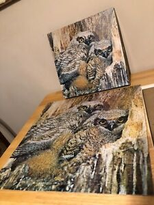 Vintage Springbok Owls Madters of the Night 1000 pc Jigsaw puzzle complete