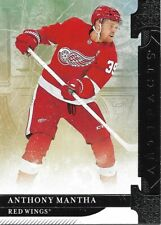 Detroit Red Wings - 2019-20 Artifacts - Complete Base Set Team (3)