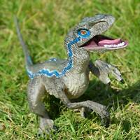 Jurassic Blue Dinosaur Velociraptor Toy Educational Gift Model B5C3